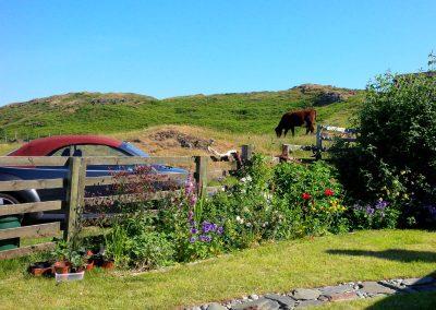 cnoc na long delightful garden